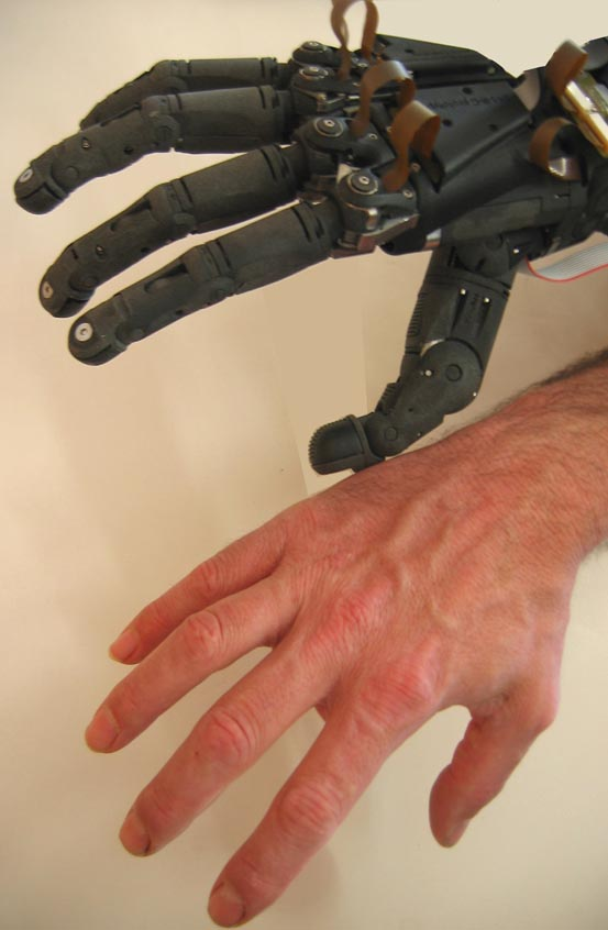 human hand-arm thesis Occupational exposures to hand-arm vibration and dust have been shown to have deleterious human  electronic thesis  occupational exposures to hand-arm.